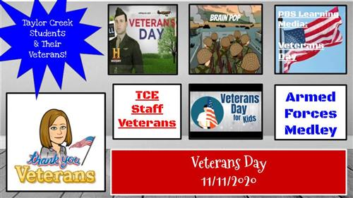 TCE Veterans Day